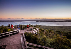 Rangitoto Island New Zealand